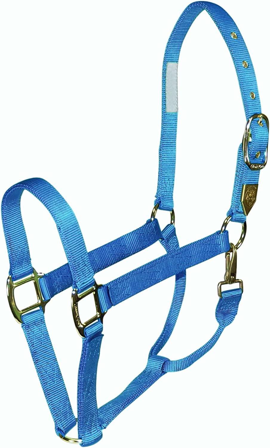 Hamilton 1DS LGBY Deluxe 1Inch Nylon Horse Halter with Snap, Berry bluee
