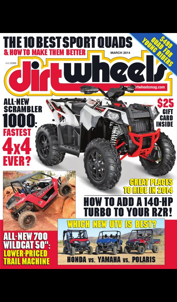 Best Tires For Rzr 800