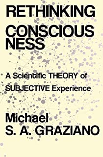 Rethinking Consciousness: A Scientific Theory of Subjective Experience
