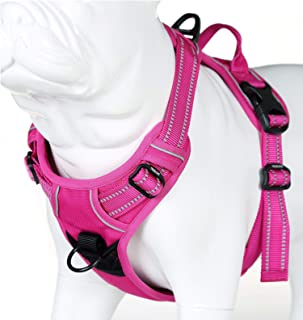 juxzh Truelove Soft Front Dog Harness .Best Reflective No Pull Harness with Handle and 2 Leash Attachments
