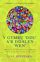 Y Gymru Ddu ar Ddalen Wen: Aralledd ac Amlddiwylliannedd mewn Ffuglen Gymreig, er 1990 (Y Meddwl a'r Dychymyg Cymreig) (Welsh Edition)