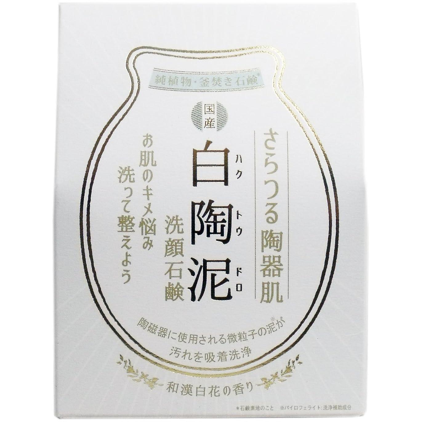 ハブブビームライバル白陶泥洗顔石鹸 100g×5個セット