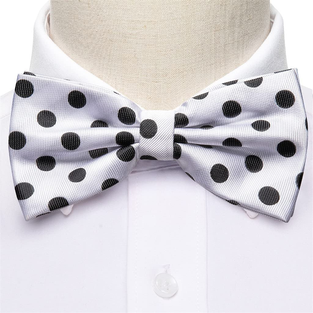 LQGSYT White Dot Silk Bow Tie for Men Wedding Accessorie Adjustable Butterfly Handky Removable Gold Ring Set (Color : White Dot, Size : One Size)
