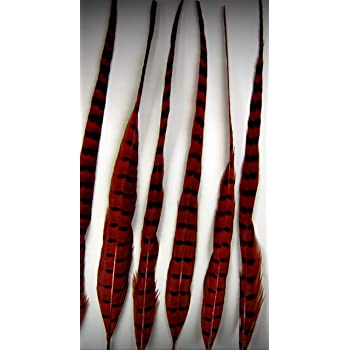 """6 BLACK RINGNECK Grizzly Hair Extensions 15/""""-20/"""" New"""