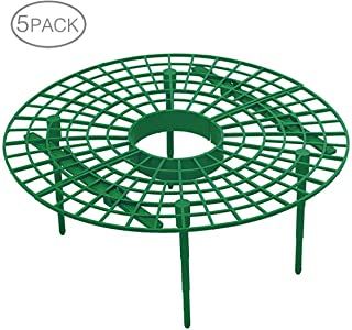 Best diy strawberry plant supports Reviews