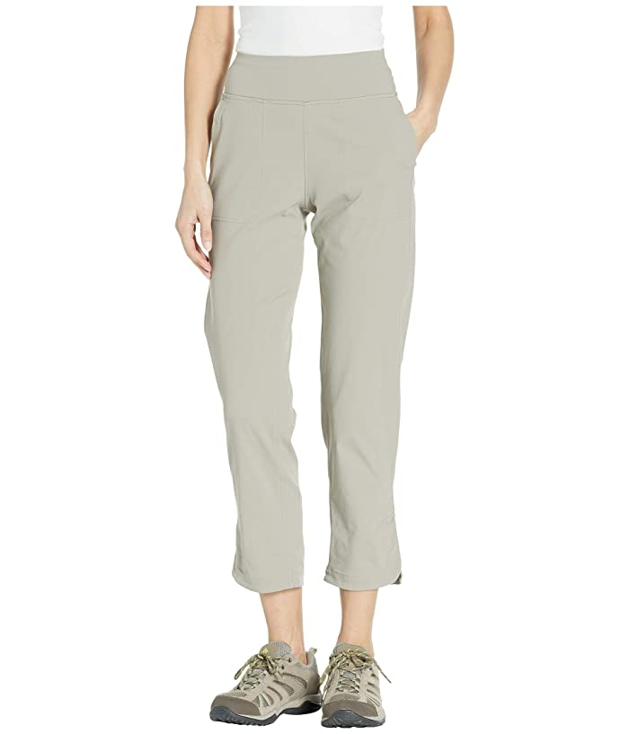 The North Face Wander Way Ankle Pants (Silt Grey) Women