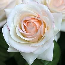 Best true touch flowers Reviews