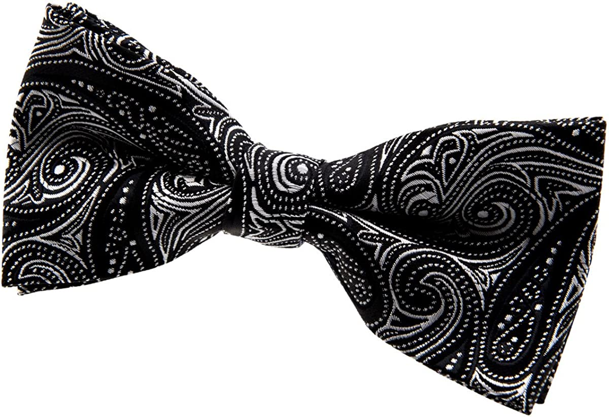 Retreez Small Paisley Pattern Woven Microfiber Pre-tied Boys Tie Various Colors