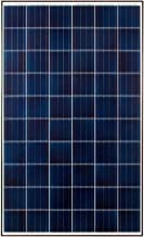 Boviet PV Solar Module Panel 260W Poly Black Frame White Backsheet BVM6610P-MF (14)