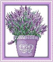 Exceart 1 Set Lavendel Borduurpakket Bloemen Diy Borduurwerk Handwerkpakket Home Craft Decor (Borduurdoek Tekening Borduur...