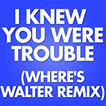 I Knew You Were Trouble (Where's Walter Remix)