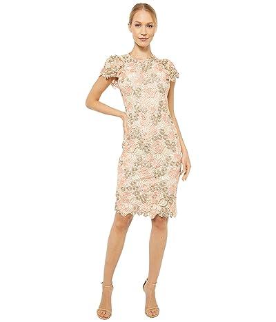 Calvin Klein Short Sleeve Lace Sheath Dress (Peach/Blossom/Khaki) Women