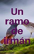 Un ramo de irmán (Galician Edition)