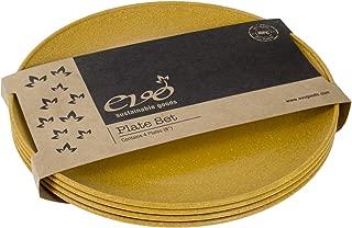 EVO Sustainable Goods 8