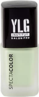 YLG Spectacolor Nail Paint Mint Condition A274 Matte Finish