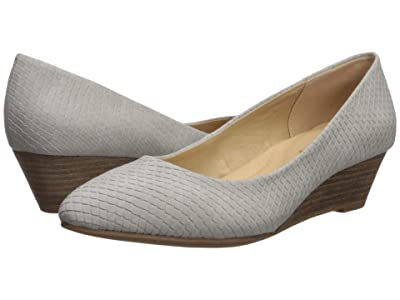 CL By Laundry Alyce (Ice Grey Snake) Women