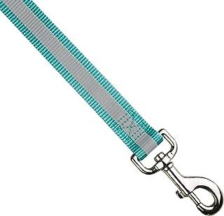 Guardian Gear Nylon Reflective Dog Leash, 6-Feet x 1-Inch Lead, Blue