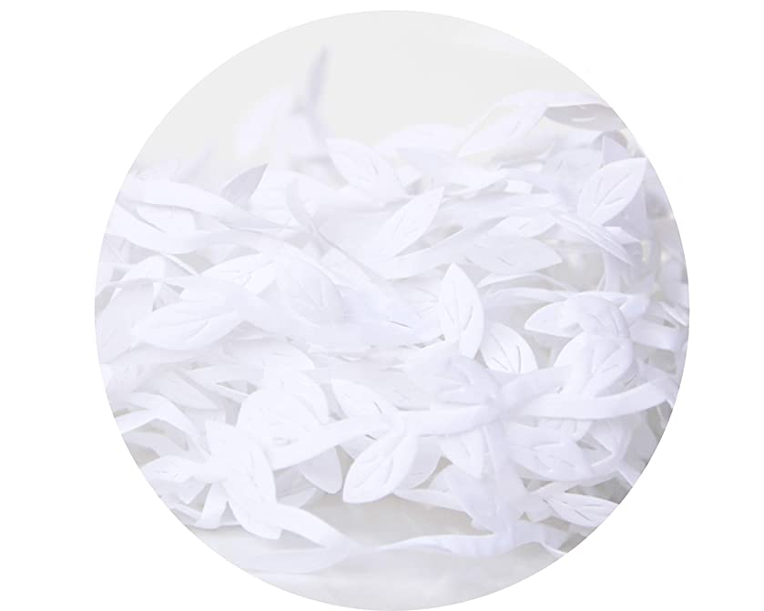 10 Meters Leaf Trim Ribbon for DIY Craft Party Wedding Home Decoration (White)