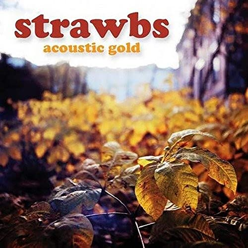 Image result for the strawbs autumn images
