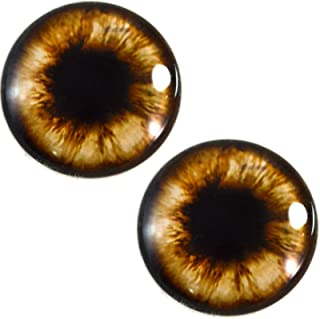 30mm Brown Teddy Bear Glass Eyes Realistic Animal Pair for Art Dolls, Sculptures, Props, Masks, Fursuits, Jewelry Making, Taxidermy, and More