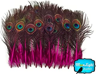 Peacock Feathers, Tail Feathers, Hot Pink Mini Natural Peacock Tail Body Feathers with Eyes