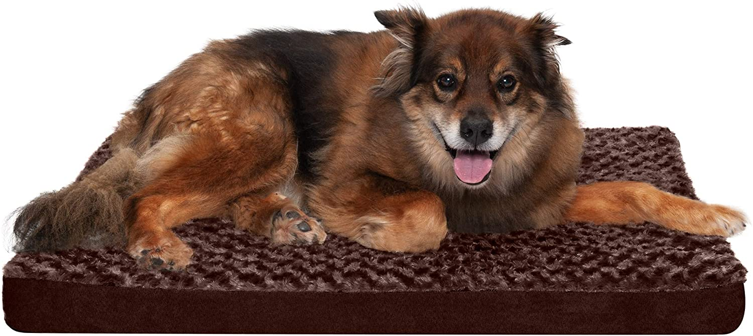 Furhaven Orthopedic Cooling Gel and Omaha Mall Memory Beds service Pet S for Foam