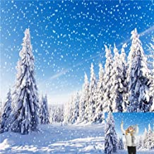 Kate 10x10ft Winter Snowflake Background for Photography Tree Wonderland Backdrops for Wedding Backdrop Booth