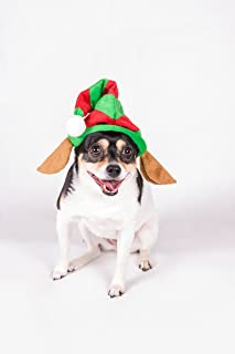 Clever Creations Puppy Dog Christmas Elf Hat   One Size Fits Most   Red and Green Striped Santa's Helper Elf Hat and Elf Ears   Measures 7