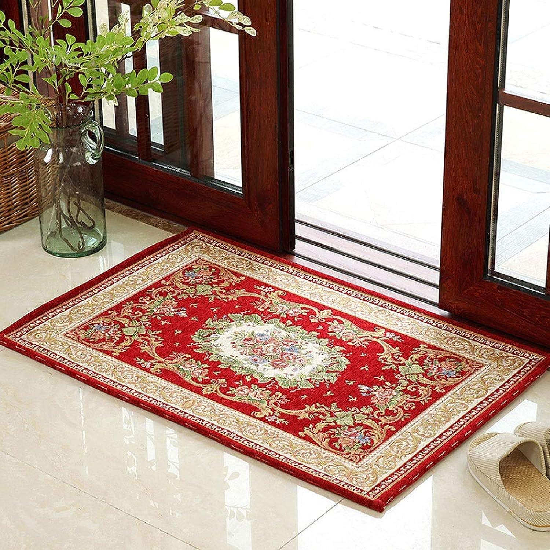 XF Doormats Door Mat Carpet Home Living Room Bedroom Mat Absorbent Non-Slip Mat -50x80cm, 60x90cm, 80x120cm Hallway Furniture (color   C, Size   50X80cm)