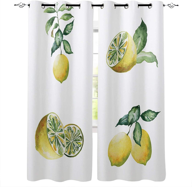 2021 model Farm Fruit Vintage Yellow Lemon Darkening Window w Dedication Room Curtains