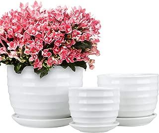 Best ceramic garden pots online Reviews