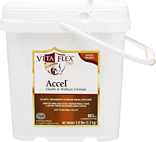 Best vita flex accel Reviews