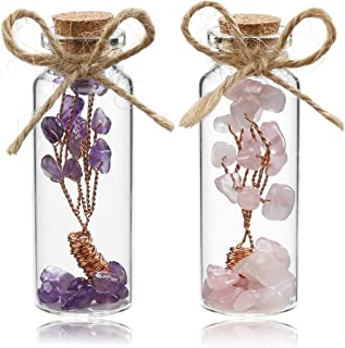 Sunligoo 2 Pcs Mini Chakra Healing Crystals Money Tree in Glass Wishing Bottles Tumbled Gemstone Reiki Wicca Stones Kit Birthday 3