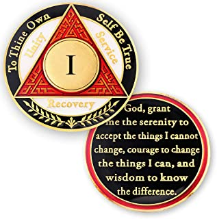 1 Year AA Medallions Sobriety Coin - Alcoholics Anonymous Chips - One Year Coins - Red White Black Token
