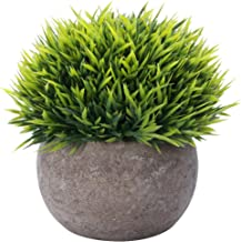 HC STAR Artificial Plant Potted Mini Fake Plant Decorative Lifelike Flower Green Plants – 1201