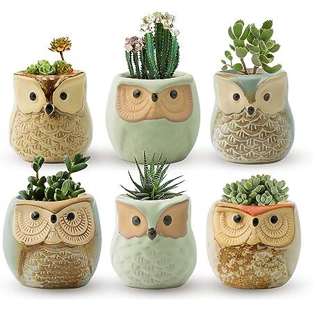 Owl planter plant ceramic pot garden flower succulent cactus no hole handmade painted indoor gardening gift