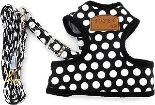 SMALLLEE_Lucky_Store New Soft Mesh Nylon Vest Pet Cat Small Medium Dog Harness Dog Leash Set