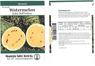 Watermelon Garden Seeds - Baby Doll Yellow Hybrid - 10 Seed Packet - Non-GMO, Vegetable Gardening Fruit Seeds