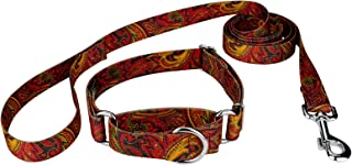 Country Brook Petz - Paisley Collection Martingale Collar and Leash Set