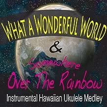 Best ukulele instrumental mp3 Reviews