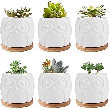 Succulent Pots, Brajttt 6 Pcs Modern Decorative Flower Planters w/ Bamboo Saucers and Drainage, Home Office Desk Garden Mini Cactus & Flower Pots (White, 6 Pack)