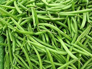 Volunteer Half Runner Bean (Green Been) Seeds (100 Seeds)