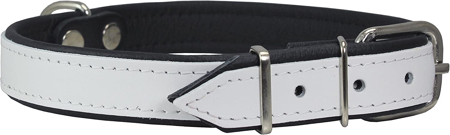 Real Leather Soft Leather Padded Dog Collar (18 21  Neck; 1  Wide, White Black)
