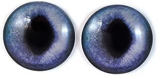 realistic cat eye
