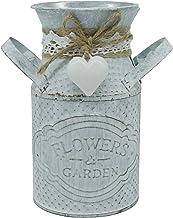 CVHOMEDECO. Primitives Vintage Mini Jug Vase Metal Milk Can with Tied Heart, Chic Rustic Flower Planter for Garden and Hom...