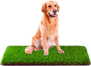 Best MTBRO Artificial Grass, Professional Dog Grass Mat, Outdoor Potty Training and Replacement Grass Mat, Easy To Clean with Drainage Holes, 100 Ounce/Sq.Yd, 28Inch X 40Inch Reviews