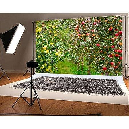 7x5ft Garden Background Green Fruit Tree Photography Backdrop Studio Photo Props Room Mural LYFU312