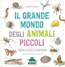 Il grande mondo degli animali piccoli. Osserva e scopri gli invertebrati (A tutta scienza)