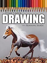 Clip: Time Lapse Drawing of a Running Horse