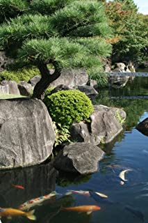 Wallmonkeys Japanese Garden Wall Decal Peel and Stick Graphic WM244255 (30 in H x 20 in W)